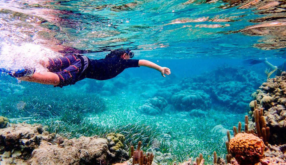 snorkel in cabo de palos