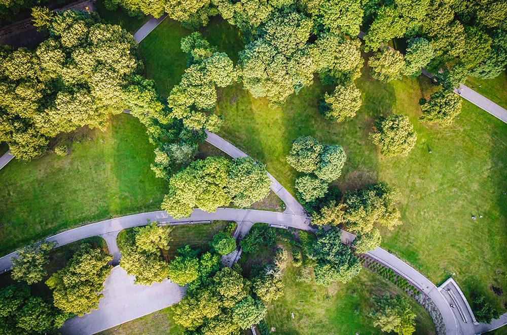 vivir rodeado zonas verdes